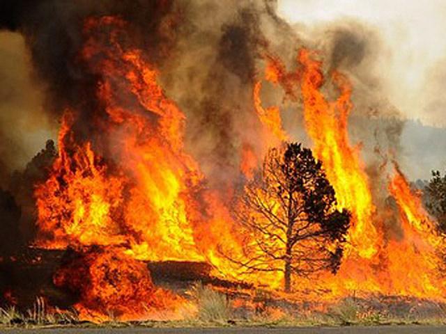 Meteorologist Sees Bad Fire Season Easing Through Late June   KGAB