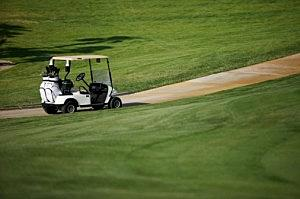 Woman s in Crook County Golf Cart Crash on vise towers, plough towers, plastic storage towers,