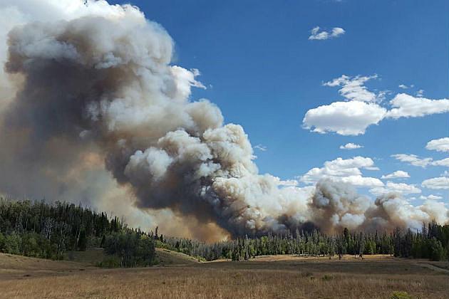 Smoke, wildfire