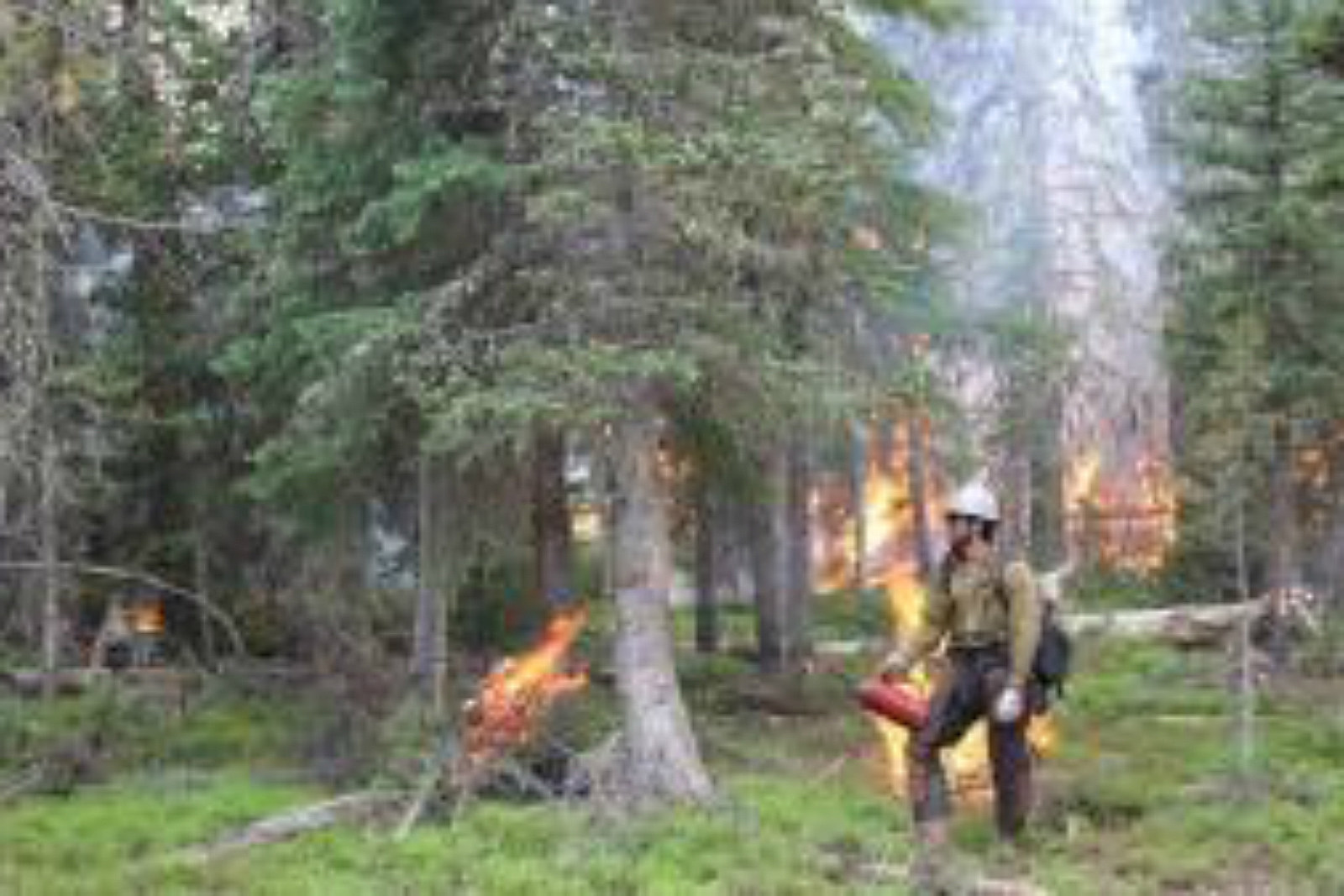 Keystone Fire, firefighter, burnout operation, InciWeb, July 2017
