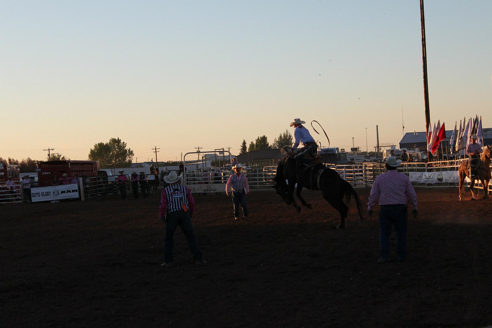 Chet Johnson, Saddle Bronc, rodeo, LJD, 2017