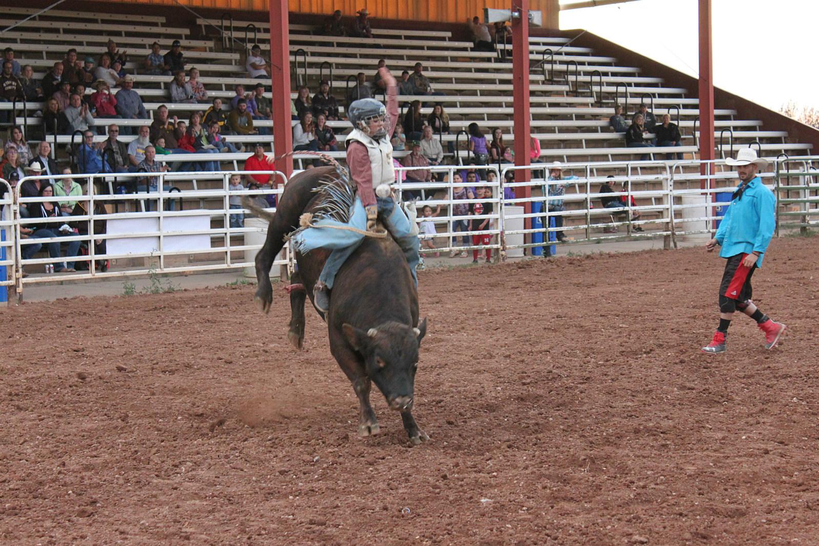 Six Cowboys Win Buckles At Jubilee Days Junior Bull Riding