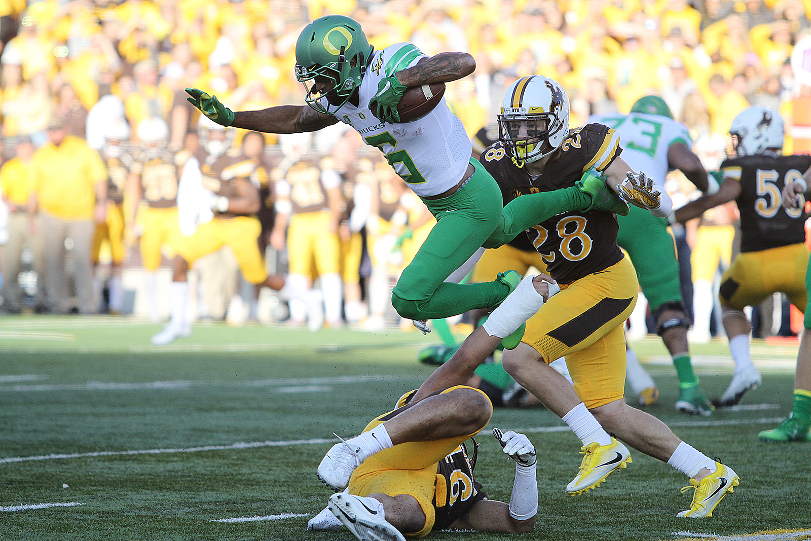 Oregon Ducks at Wyoming Cowboys Start Time, Betting Odds