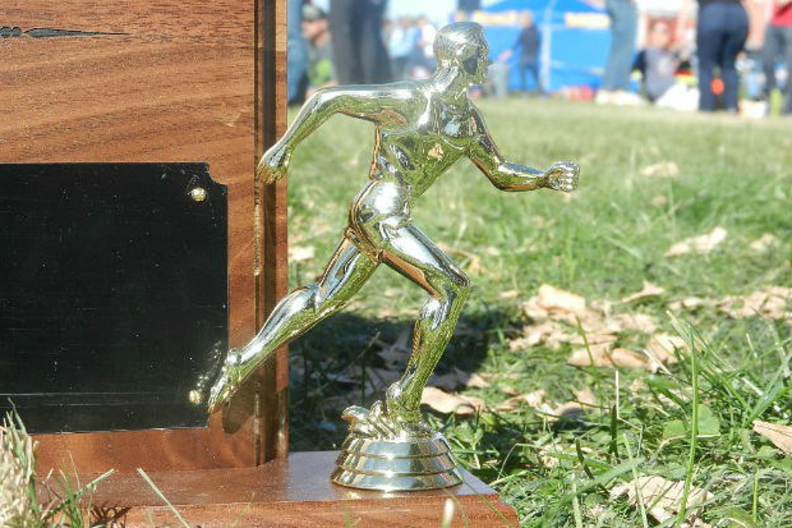 Cross Country, XC, Trophy